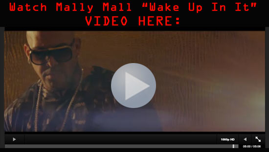 """Watch Mally Mall """"Wake Up In It"""" Video Here"""